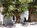 Ermita de la Mare de Déu de l'Avellà, Catí 04.JPG