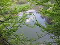 Eschelbronn Naturschutzgebiet Kallenberg 12.JPG