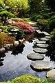 Estanque en un jardín Japonés.jpg