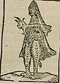 Eveque marin, Anonyme, Histoire Des Animaux, 1786.jpg