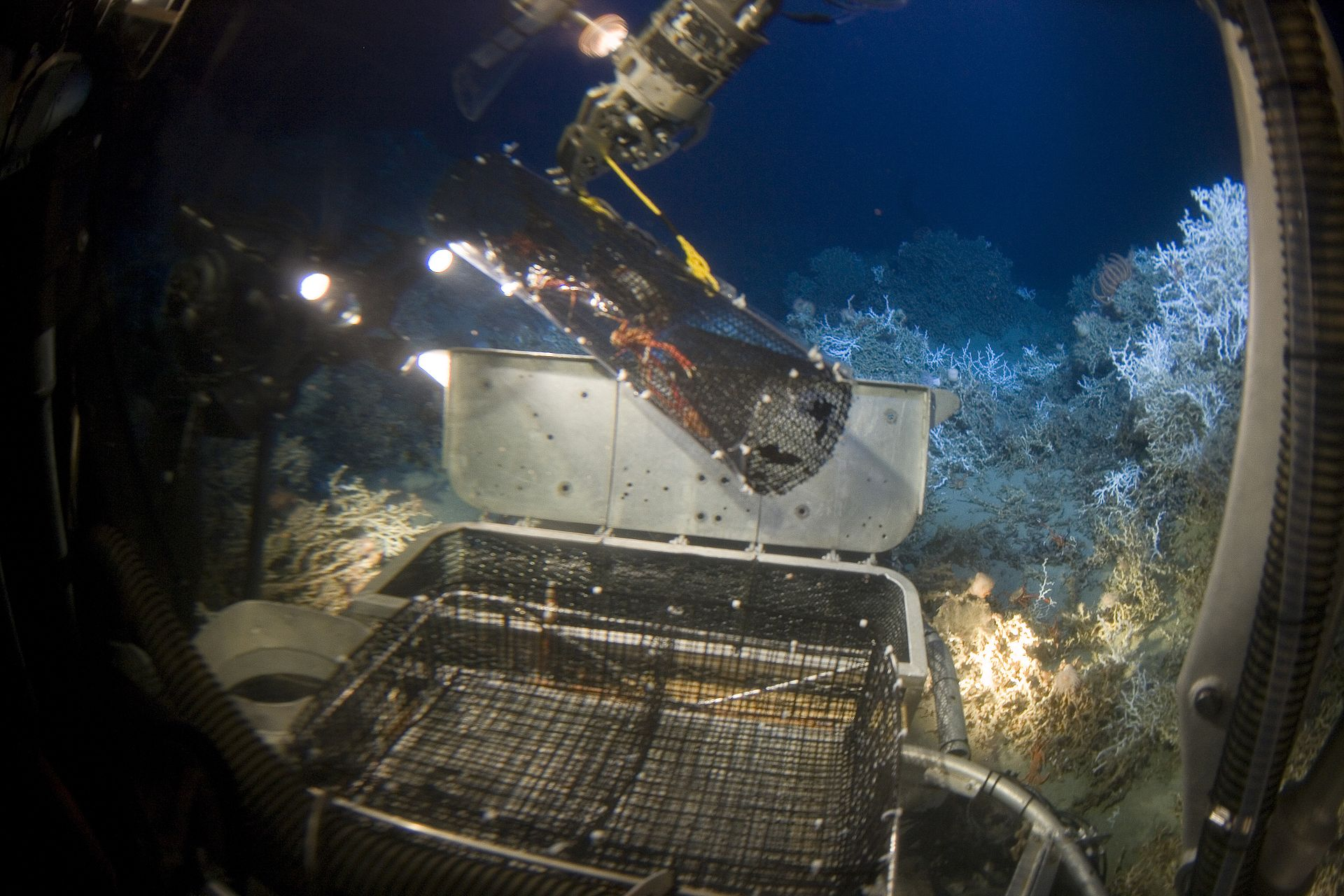 deep sea mining Biodiversity losses from deep-sea mining are unavoidable and possibly irrevocable, an international team of scientists, economists and lawyers argue they say the international seabed authority.