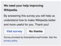 External-survey.png
