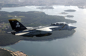 F-14B VF-103 Joint Wings 2002.jpeg