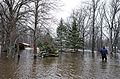 FEMA - 40416 - Resident wades through water in Minnesota.jpg