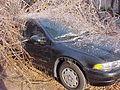 FEMA - 553 - Photograph by John Shea taken on 12-29-2000 in Arkansas.jpg