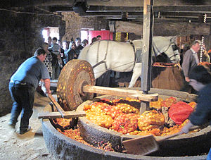 Cider mill - Horse-driven stone mill: At the Faîs'sie d'Cidre 2009, Jersey