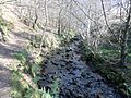Fairlie Glen, North Ayrshire.JPG