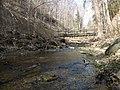Fall Run Park in Shaler Township, late winter - 18.jpeg