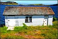 Family Road Trip to Newfoundland July 12th-28th 2017 (38077825944).jpg