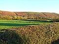 Farmland at Prolley Moor - geograph.org.uk - 614183.jpg