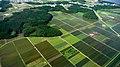 Farmland in Aomori, Japan; June 2009.jpg