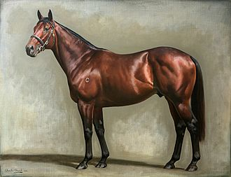 Fastnet Rock (horse) - Fastnet Rock: Winner of the 2005 Lightning Stakes and Oakleigh Plate, by Charles Church