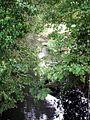 Feeder stream , Aylesbury Arm - geograph.org.uk - 243211.jpg