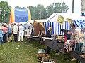 Festival Kozma Prutkov 2009 (9).JPG