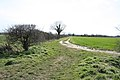 Field track heading towards the Cam - geograph.org.uk - 744313.jpg
