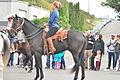 Fiestas Patrias Parade, South Park, Seattle, 2015 - 277 - the horses (21603951821).jpg