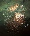 Fireworks Birmingham New Year 2011 h1 (5311723343).jpg