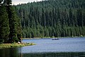 Fishing along shoreline Jubilee Lake, Umatilla National Forest (36294298926).jpg