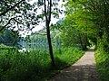 Fiume Adda 05-2009 - panoramio - adirricor.jpg