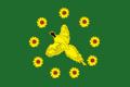 Flag of Bikinsky rayon.png