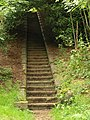 Flight of steps near Tank Quarry - geograph.org.uk - 975319.jpg