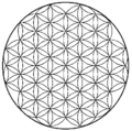 Flower of life-3.5level.png