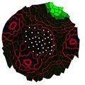 File:Flux-Based-Transport-Enhancement-as-a-Plausible-Unifying-Mechanism-for-Auxin-Transport-in-Meristem-pcbi.1000207.s014.ogv
