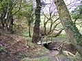 Footbridge near Cranbury Ley Farm - geograph.org.uk - 754665.jpg