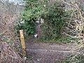 Footpath junction on Pilgrim's Way - geograph.org.uk - 1160496.jpg