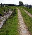 Footpath to Mynydd Rhos Wen. - geograph.org.uk - 1317127.jpg