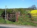 Footpath to Windlestone - geograph.org.uk - 404754.jpg