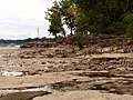 Fossil beds P8130005.jpg