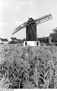 Fotothek df rp-a 0190025 Pömmelte. Bockmühle, Baujahr 1860.jpg