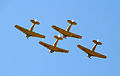 Four Harvards 2 (7922074148).jpg