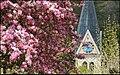 Frühling. - panoramio.jpg