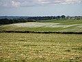 Freshly limed field - geograph.org.uk - 1274997.jpg