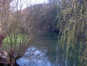 River Frome, Bristol - The river by Snuff Mills