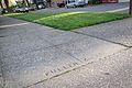 Fuller Cherry Sidewalk Signature.jpg