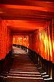 Fushimi Inari3.jpg