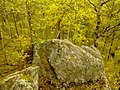 G. Novouralsk, Sverdlovskaya oblast', Russia - panoramio (183).jpg