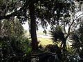 GA Nicholsonville Vernon River02.jpg