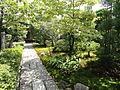 Garden - Hyakumanben chion-ji - Kyoto - DSC06578.JPG