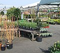 Garden Centre, Codsall and Wergs, Staffordshire - geograph.org.uk - 384644.jpg
