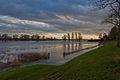 Gelderse IJssel extreem hoog water 26-12-2012 (8315243408).jpg