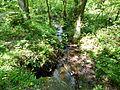 Geologischer Wanderweg Tharandter Wald (05).jpg