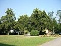 Germersheim, Ludwigspark - geo.hlipp.de - 23747.jpg