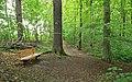 Geschützter Landschaftsbestandteil Schubertgrund in Sachsen.2H1A1082WI.jpg