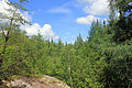 Gfp-minnesota-voyaguers-national-park-interior-forest.jpg