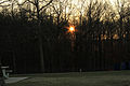 Gfp-tennessee-sunset-behind-forest.jpg