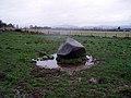 Glacial Erratic - geograph.org.uk - 354107.jpg